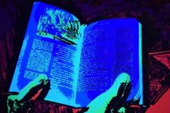 'Blue Book' by Robert Edmondson